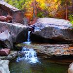 """Waterfall Autumn Zion NP subway P1010108"" by almarphotography"