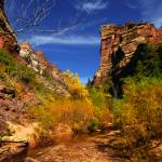 """Red Hills Landscape, Subway, Zion NP"" by almarphotography"