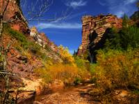 Red Hills Landscape, Subway, Zion NP