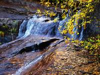 Autumn Waterfall with Golden Leaves, Subway