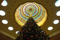 Mall Christmas Tree Study 1