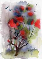 Abstract Poinciana Tree Landscape Portrait