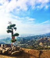 Christmas in Griffith Park
