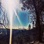 """""""Griffith Park, Los Angeles"""" by Misskellymcg"""