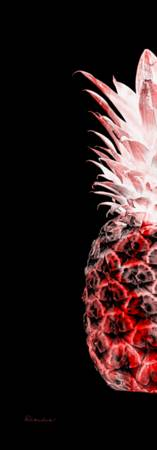 14LL Artistic Glowing Pineapple Digital Art Red