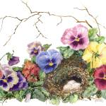 """Spring Nest"" by Sharon_himes"