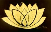 Sunrising Lotus7