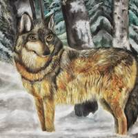 Winter Wolf Art Prints & Posters by Lisa Rich