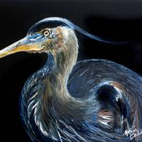 BLUE HERON WATERCOLOR 1612 by Marcia Baldwin