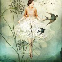 Fly By Art Prints & Posters by Catrin Welz-Stein