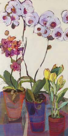 Orchids & Tulips