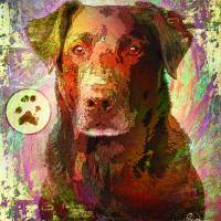 C:\fakepath\Dog Art Prints & Posters by Greg Simanson