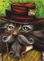 Mad Hatter Cat