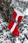 "Bright Red Santa Stocking by James ""BO"" Insogna"