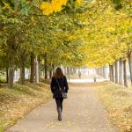 """""""_RBV8211 100 Walking in Autumn"""" by Nadril_RB"""