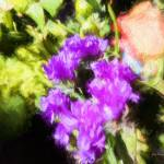 """impressionistic_floral_bouquette_20161204_105821-5"" by johncorney"