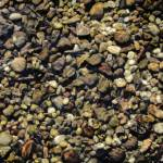 """Pebbles"" by jdm"