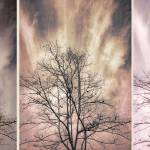 """Winter Solstice Tryptic"" by johncorney"