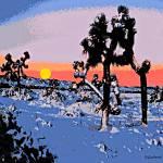 """""""Snowy Desert-4000"""" by davegafford"""