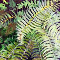 Cascadia Study No 1 Art Prints & Posters by Jennifer Lommers