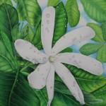 """""""Tiare Tahiti"""" by joeyartist"""