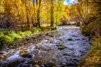 Autumn Flow at McGee Creek