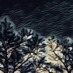 """""""A Stormy Night"""" by SplitWindow"""