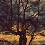 """A Wicked Tree"" by SplitWindow"
