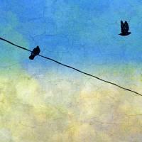 Blue Sky Art Prints & Posters by James Hanlon