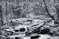 Unami Creek - Sumneytown - PA - USA - B&W
