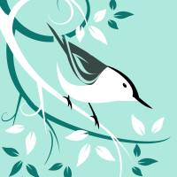 White Breasted Nuthatch Art Prints & Posters by Pixel Paint Studio