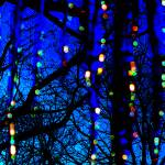 """""""Dripping Lights"""" by MaryLorArt"""