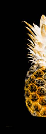 14OL Artistic Glowing Pineapple Digital Art Orange