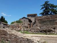 Farm of the Forum