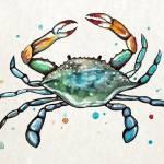"""""""BlueCrab"""" by Littlepig"""