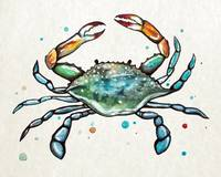 Maryland Blue Crab in Watercolor