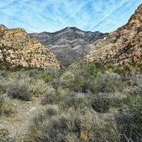 Red Rock Canyon Nevada Art Prints & Posters by Glenn McCarthy