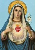 Immaculate Heart of Mary Virgin Mary Picture