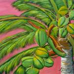 """Coconut Palm"" by anthonydunphy"