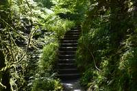 Stairs (Lidford gorge)