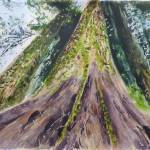 """""""grove of patriarchs, soaring tree"""" by Dennisartist"""