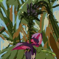 Banana Tree Winter Park Art Prints & Posters by Roger White