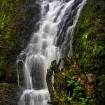 """winter fall05162016Silver Falls Day 3-1_086"" by Michele"
