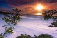 Winter-Sunset-Over-Duck-Harbor-Dunes-wellfleet