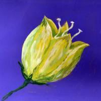 yellow tulip on purple acrylic painting Art Prints & Posters by Dawna Morton