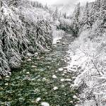 """South Fork Snoqualmie River winter panorama"" by JohnChaoPhoto"