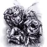 """Black roses"" by JONG23"
