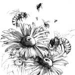 """""""Flowers and Bees"""" by JONG23"""