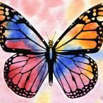 """""""Rainbow Butterfly"""" by IrinaSztukowski"""
