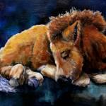 """DartmoorFoal"" by ArtByDianeKraudelt"
